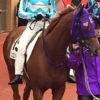 2歳馬近況更新(2017.1.31)とシュエット背水