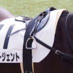 2歳馬近況とダイバージェント臨時更新(2017.5.16)