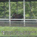 2歳馬調教動画アップ