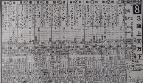 7/29 新潟8R@日刊スポーツ