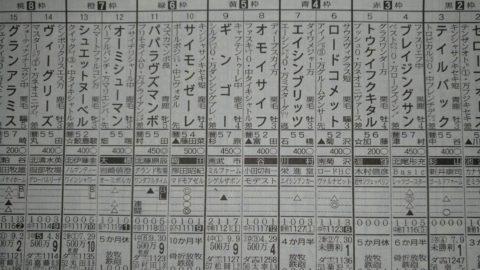 シュエットヌーベル 10/28新潟6R@東スポ